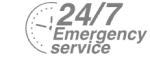 24/7 Emergency Service Pest Control in Twickenham, St. Margarets, TW1, TW2. Call Now! 020 8166 9746